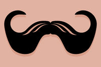 Imperial Moustache Icon Vector