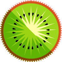 Kiwi Fruit Slice Vector Isolated