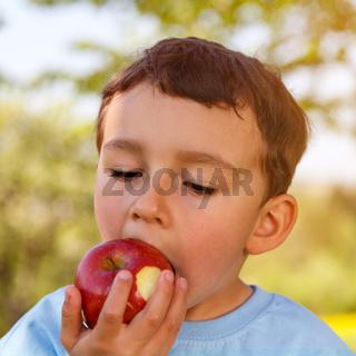 Kind kleiner Junge isst Apfel Frucht essen draußen Quadrat Frühling