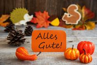 Label With Autumn Decoration, Alles Gute Means Best Wishes