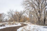 windy trail in fall or winter scenery