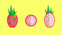 Dragon Fruit Banner Vector