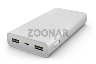 The power bank