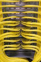 Netzwerk Switch und Netzwerkkabel in einem Rechenzentrum