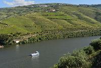 Ausflugsschiff auf dem Douro Fluss,  Pinhao, Douro Tal, Portugal