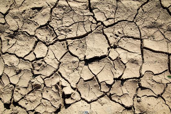 wegen Regenmangel vertrocknette Erde