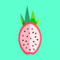 Dragon Fruit Halved Minimalism Art Vector