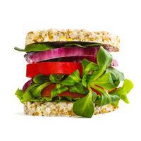 Vegetarian healthy burger concept