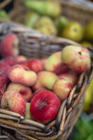 Nectarines and pears for sale
