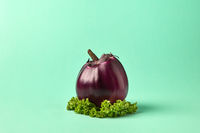 Ripe big eggplant - natural organic freshly picked vegetables on a green leaf on a pastel paper background.