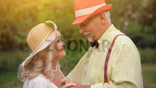 The Dance of The Old Couple In The Summer Garden