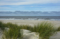 Nordseekueste in Holland 3