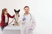 Dog getting checked at vet with their owner.