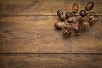 rustic grunge wood with fall decoration