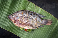 Traditional Thai barbecue tilapia fish staffed with line lemon grass and chili as top view on a banana leaf
