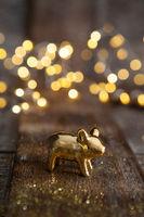 Goldenes Schweinchen vor Lichtern