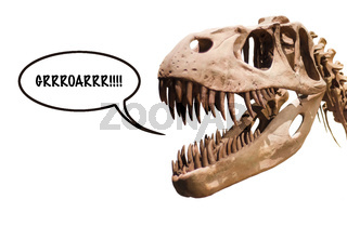 Tyrannosaurus Rex head with thought ballon with the word Grrroarrr!! on white isolated background with copyspace.