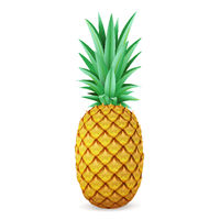 Bright realistic pineapple isolated on white background