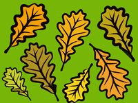 modern autumn oak leaf design in bold colors on a green background