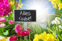 Sunny Spring Flower Meadow, Alles Gute Means Best Wishes