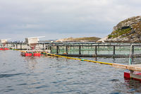 Fish farming in cages in the sea at the coast