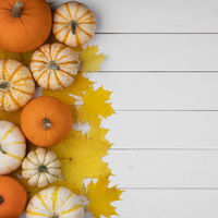 Pumpkins and maple leaves