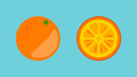 Orange Fruit Banner Vector