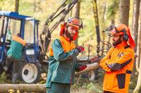 Zwei Holzfäller planen das Holzrücken im Wald