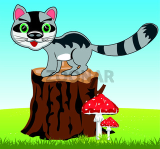 Cartoon of the wildlife racoon on nature