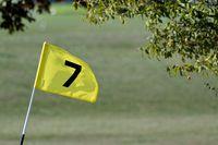 1 BA Golffahne 1.jpg