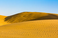 Sand dunes at sunset India