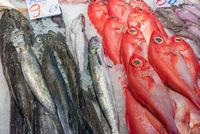 Rotbarsche und andere Fische auf einem Markt