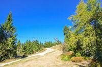 Fichtelgebirge Warmensteinach Wald Freizeit Natur