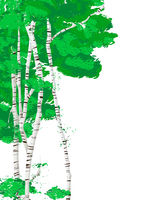 Silver birch trees template