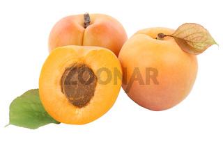 Aprikose Aprikosen Frucht Früchte Obst Freisteller freigestellt isoliert