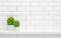 white shelf on tiled wall with green potted plants mock up