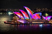 Sydney Opera House reptile skin during Vivid Sydney