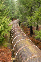 Resource Pipeline Cuts Through National Forest