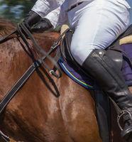 Saddle with stirrups on stallion