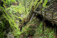 Wooden stairs through a water gorge in Austria