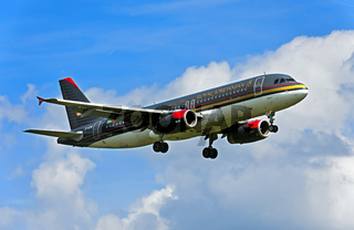 Royal Jordanian Airbus A320-232, Jordanian