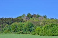 Oberoderwitzer Spitzberg