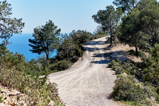 Path through the forest in the mountains of Ibiza Island. Spain