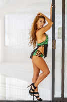 Sexy Brunette Lingerie Model Indoors