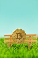 Bitcoin Münze auf Bank als Investition Konzept