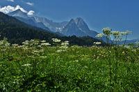 Wettersteingebirge bei Garmisch-Partenkirchen, Bayern, Deutschla