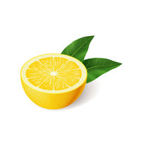 Realistic bright yellow lemon with green leaf half sliced vector
