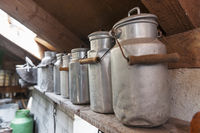 lined up milk churns