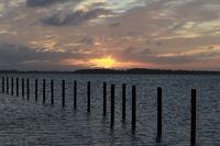 sunrise at the Bodden near Barth , Mecklenburg-Vorpommern, Germany, Europe