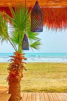 Beach bar wuth palm